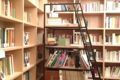 scala-biblioteca